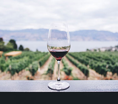 vin rouge espagnol appellation rioja